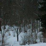 dimanche-anniv-a-Bronnoya-30-150x150